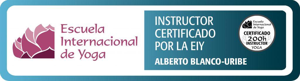 Escuela internacional de yoga 200H